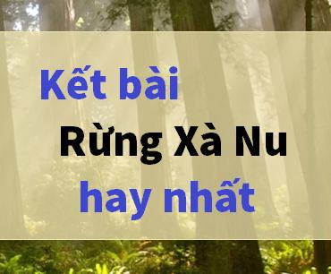 Tuyển chọn 10+ kết bài rừng xà nu của Nguyễn Trung Thành