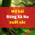Tuyển chọn 10+ mở bài rừng xà nu của Nguyễn Trung Thành