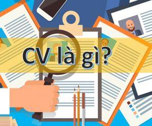 CV là gì? Những sai lầm khi viết cv xin việc