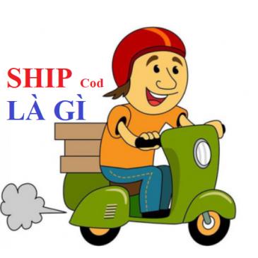 Ship Cod là gì? Những điều cần biết về Ship Cod